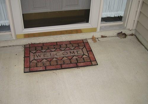 Welcome Door Mat To Home